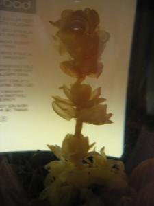 花ジャスミン